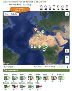 BTO Cuckoo Tracking Project